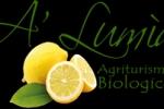 Agriturismo A Lumia