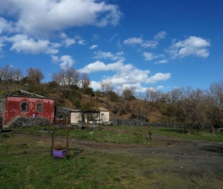Agriturismo Biologico Viola Nel Parco
