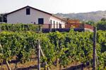 Azienda Agricola e Agrituristica Camia