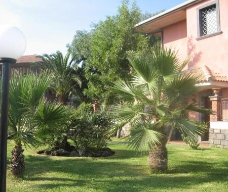 Villa Papale