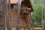 Villa Rosemary Hill's