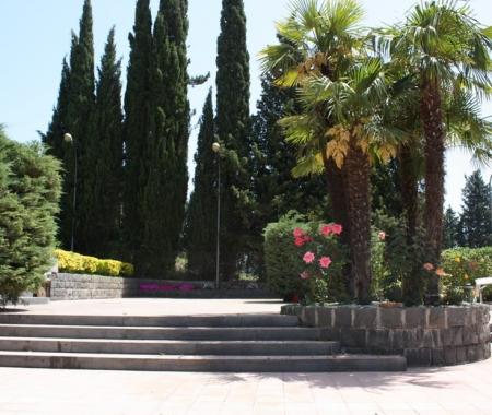 Athena Garden