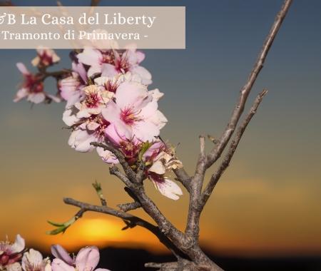 Casa Del Liberty