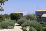 Il Giardino Della Casa Blu