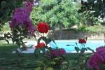 Il Giardino Dei Carrubi