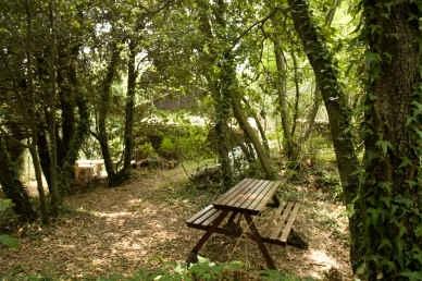 Baita Nei Boschi Del Parco Dell'etna
