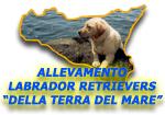 """Allevamento Labrador Retrievers """"della Terra del Mare"""""""